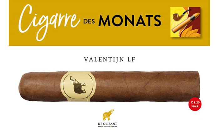 Cigarre des Monats März 2021: De Olifant Valentijn
